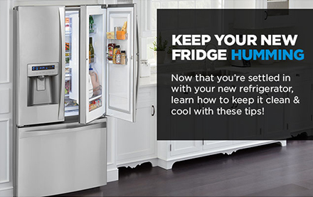 Sears Kitchen Appliance Email